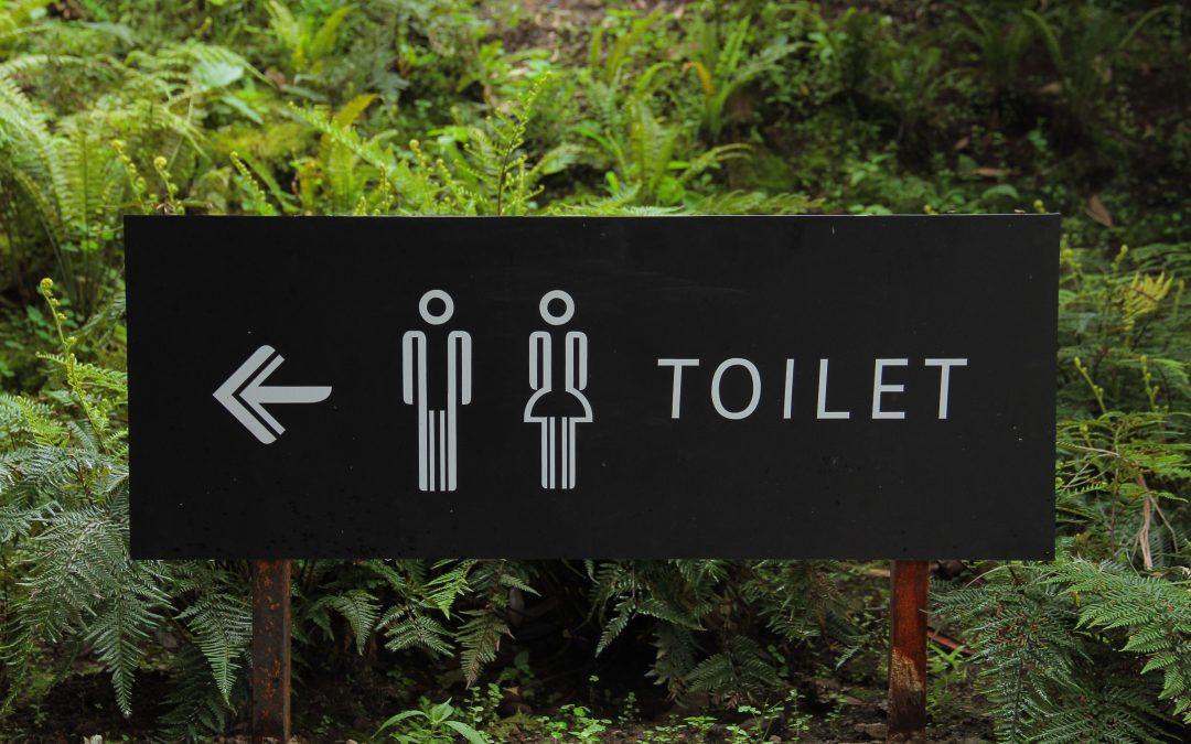 Toilet renovatie 1 dag